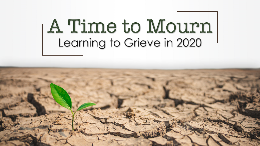 A Time to Mourn - Learning to Grieve in 2020 Image
